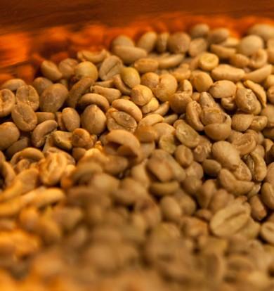 Sortenreiner Kaffee
